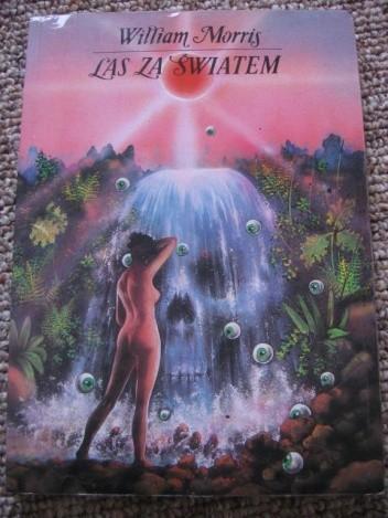 Okładka książki Las za światem