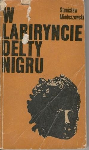 Okładka książki W labiryncie delty Nigru