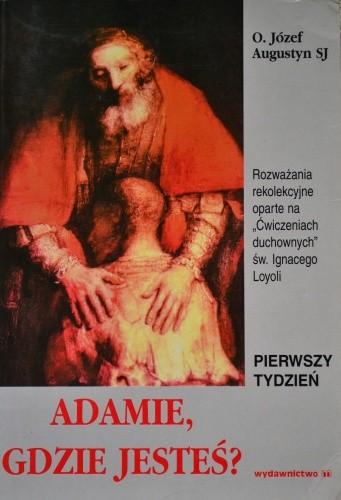 Okładka książki Adamie, gdzie jesteś ?