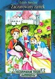 Okładka książki Zaczarowany zamek