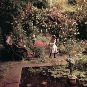 W książkowych ogrodach