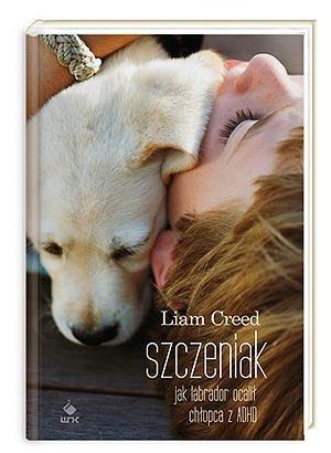 Okładka książki Szczeniak. Jak labrador ocalił chłopca z ADHD Liam Creed
