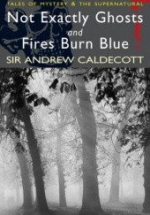 Okładka książki Not Exactly Ghosts and Fires Burn Blue Andrew Caldecott
