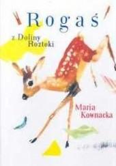 Okładka książki Rogaś z Doliny Roztoki Maria Kownacka