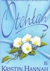 Okładka książki Otchłań Kristin Hannah