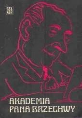 Okładka książki Akademia pana Brzechwy. Wspomnienia o Janie Brzechwie. Antoni Marianowicz