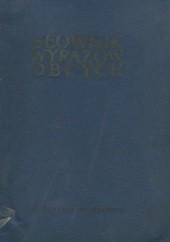 Okładka książki Słownik wyrazów obcych praca zbiorowa