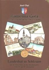 Okładka książki Kamienna Góra i okolice na widokówkach z XIX i XX wieku Józef Chęć