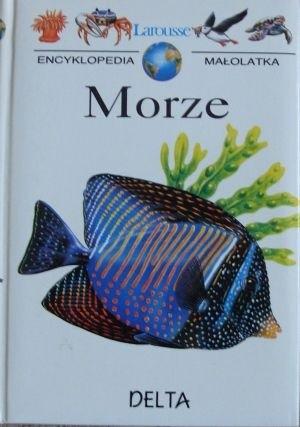Okładka książki Morze Nina Morgan