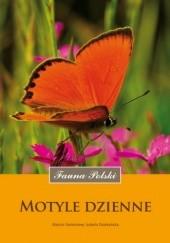 Okładka książki Motyle dzienne Marcin Piotr Sielezniew,Izabela Dziekańska