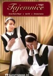 Okładka książki Zimowa burza Anne Marie Meyer