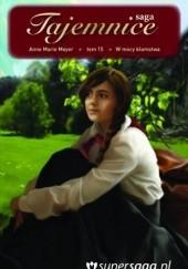 Okładka książki W mocy kłamstwa Anne Marie Meyer