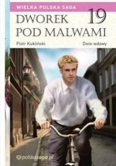 Okładka książki Dwie wdowy Marian Piotr Rawinis
