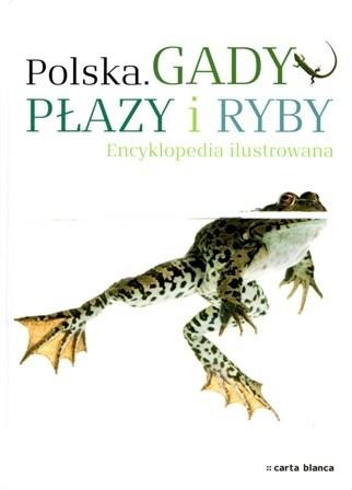 Okładka książki Gady, płazy i ryby. Encyklopedia ilustrowana Michał Grabowski,Radomir Jaskuła