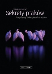 Okładka książki Sekrety ptaków. Fascynujący świat ptasich zmysłów Tim Birkhead
