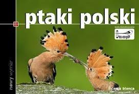 Okładka książki Ptaki Polski Marcin Karetta