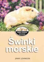 Okładka książki Świnki morskie Jinny Johnson