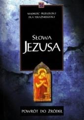 Okładka książki Powrót do źródeł. Słowa Jezusa.