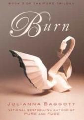 Okładka książki Burn Julianna Baggott