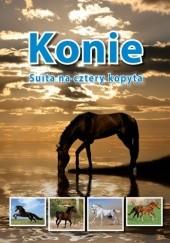 Okładka książki KONIE. Suita na cztery kopyta Jolanta Reisch-Klose