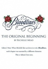Okładka książki Adrian's Lost Chapter Richelle Mead