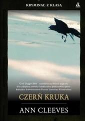Okładka książki Czerń Kruka