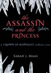 Okładka książki The Assassin and the Princess Sarah J. Maas