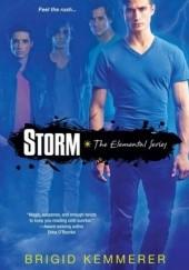 Okładka książki Storm Brigid Kemmerer