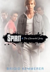 Okładka książki Spirit Brigid Kemmerer