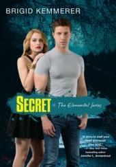Okładka książki Secret Brigid Kemmerer