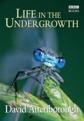 Okładka książki Life in the Undergrowth David Attenborough