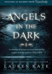 Okładka książki Fallen: Angels in the Dark Lauren Kate