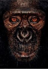 Okładka książki James and Other Apes Jane Goodall,James Mollison