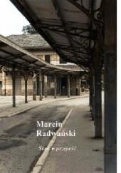 Okładka książki Skok w przepaść Marcin Radwański