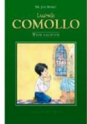 Okładka książki Ludwik Comollo - Wzór Młodych Jan Bosko