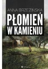 Okładka książki Płomień w kamieniu Anna Brzezińska