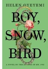 Okładka książki Boy, Snow, Bird Helen Oyeyemi