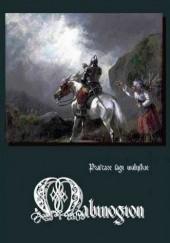 Okładka książki Mabinogion. Prastare sagi walijskie