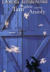 Okładka książki Tam, gdzie spadają Anioły Dorota Terakowska
