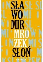 Okładka książki Słoń Sławomir Mrożek