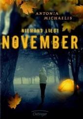 Okładka książki Niemand liebt November Antonia Michaelis