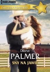 Okładka książki Sny na jawie Diana Palmer