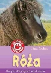 Okładka książki Róża. Kucyk, który tęskni za domem Tina Nolan