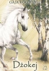 Okładka książki Dżokej Gaja Kołodziej