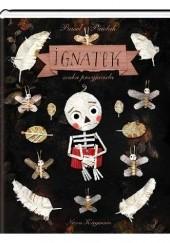 Okładka książki Ignatek szuka przyjaciela Paweł Pawlak