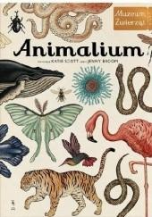 Okładka książki Animalium. Muzeum Zwierząt Jenny Broom