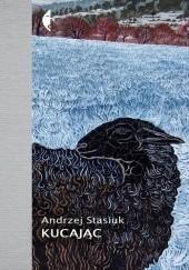 Okładka książki Kucając Andrzej Stasiuk