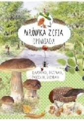 Okładka książki Mrówka Zofia opowiada o kwiatach, drzewach, jagodach, grzybach Stefan Casta