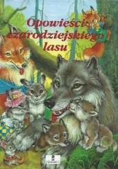 Okładka książki Opowieści czarodziejskiego lasu Tamara Krukova