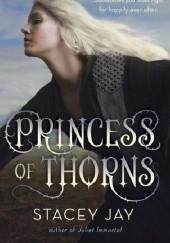 Okładka książki Princess of Thorns Stacey Jay